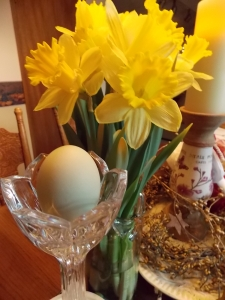 Daffodils and the Egg